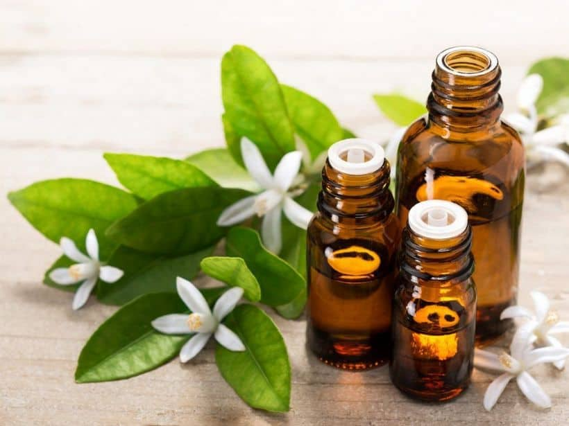 Most Expensive Essential Oils in the World - #10 Neroli Essential Oil - $354