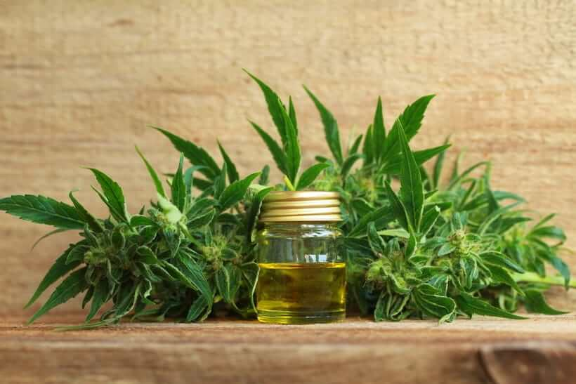 Most Expensive Essential Oils in the World - #4 Cannabis Flower Essential Oil - $946 per oz.